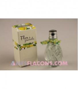 Flor de graviola